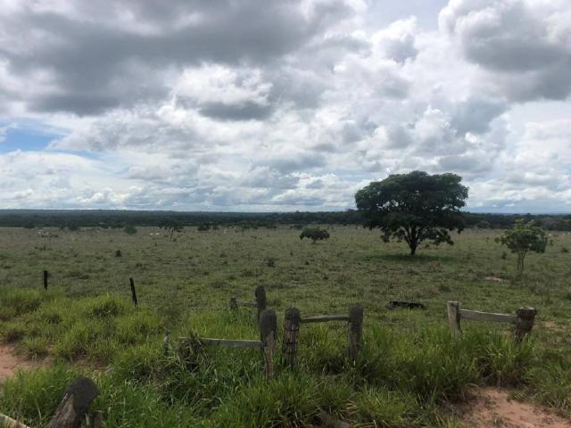 Chácara à venda em Rural, Nova mutum cod:22068 - Foto 16