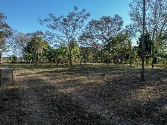 Chácara à venda em Zona rural, Santo antonio do leverger cod:21685 - Foto 11