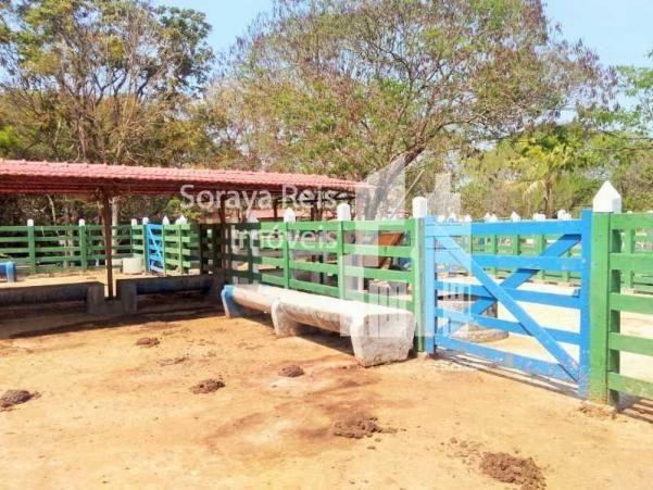 Chácara à venda com 4 dormitórios em Área rural de pará de minas, Pará de minas cod:820 - Foto 6
