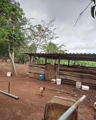 Sítio em Araguari - MG com 21 hectares - Foto 17