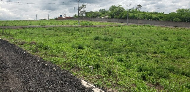 Lote de Terreno com 528m² para venda na Região de Gravatá - PE - Foto 5