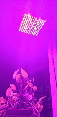 Full spectrum LED cultivo indoor 300w - R$300