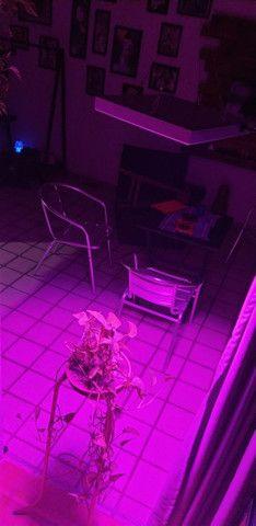 Full spectrum LED cultivo indoor 300w - R$300 - Foto 3