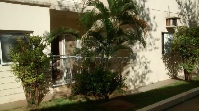 Apartamento à venda com 2 dormitórios em Colina verde, Jaboticabal cod:V3266 - Foto 4