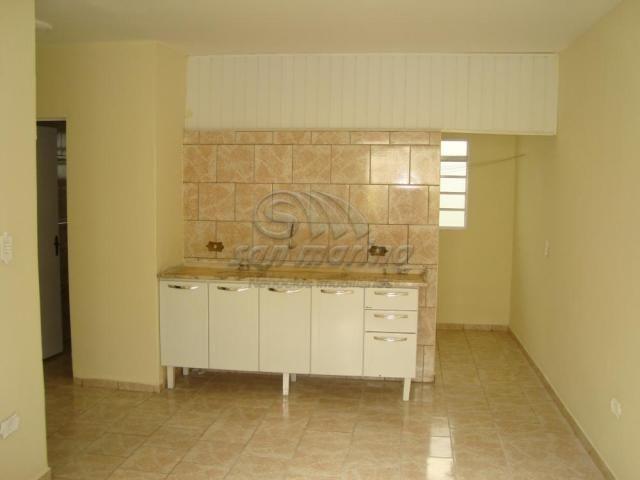 Apartamento para alugar com 1 dormitórios em Jardim sao marcos ii, Jaboticabal cod:L407 - Foto 5