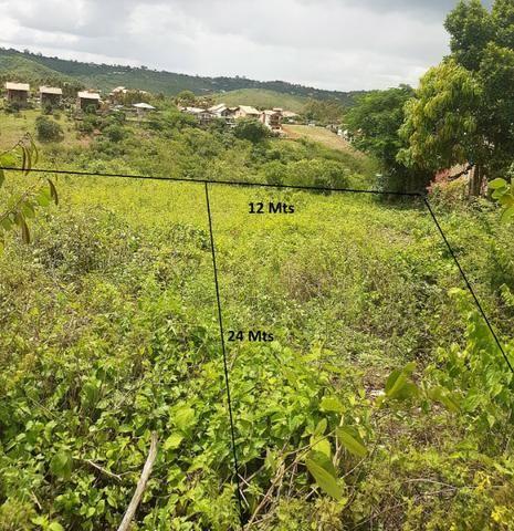 Terrenos em Gravata - Local nobre - Foto 5