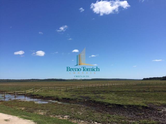 Fazenda à venda, 12100000 m² por r$ 37.000.000 - trancoso - porto seguro/bahia - Foto 4