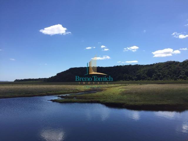 Fazenda à venda, 12100000 m² por r$ 37.000.000 - trancoso - porto seguro/bahia - Foto 8