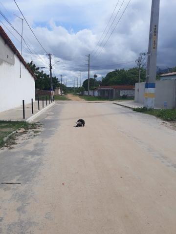 Casa Na Pavuna aberto a negociações - Foto 3