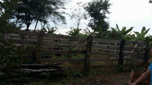 Chácara 23 Hc,Ribeirão do Gloria, perto de Agrovila das Palmeiras - Santo Antonio Leverger - Foto 6
