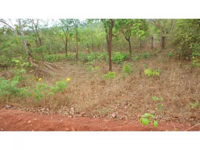 Chácara à venda em Zona rural, Chapada dos guimaraes cod:20937 - Foto 19