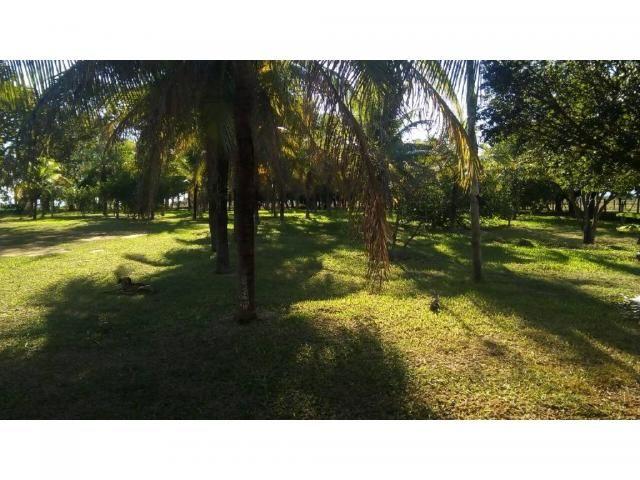 Chácara à venda em Zona rural, Pocone cod:20534 - Foto 18