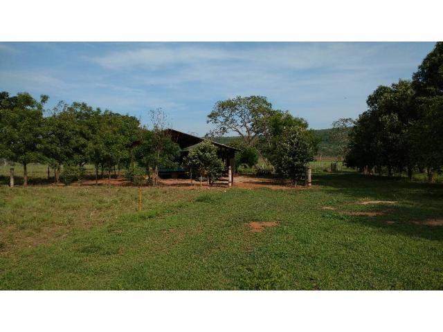 Chácara à venda em Zona rural, Nobres cod:20818 - Foto 5
