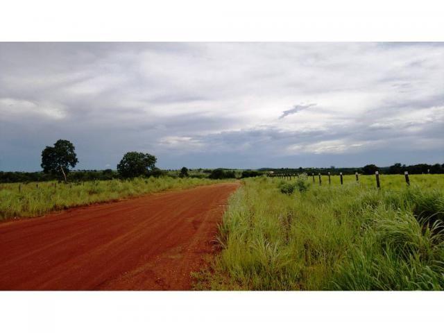 Chácara à venda em Zona rural, Nossa senhora do livramento cod:13185 - Foto 7