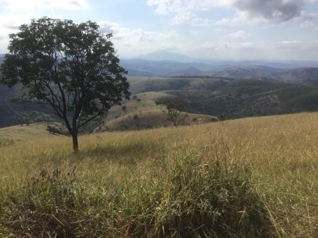 Fazenda 455.96 hectares - Governador Valadares/MG - Foto 10