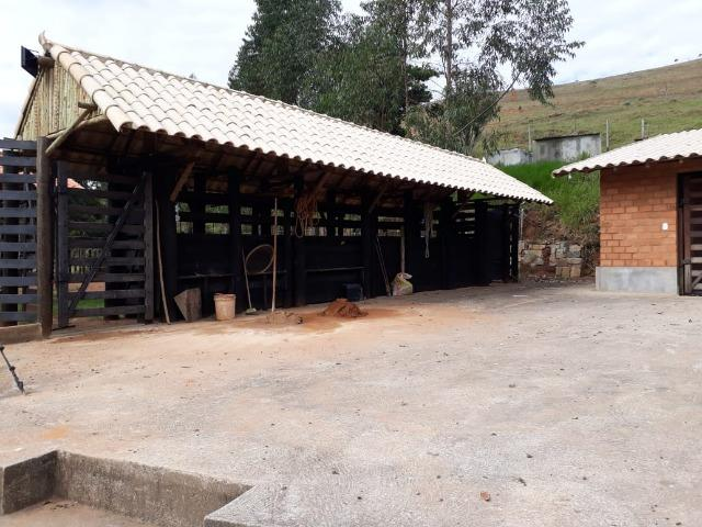 Fazenda 159,72 hectares - Leopoldina/MG; - Foto 6