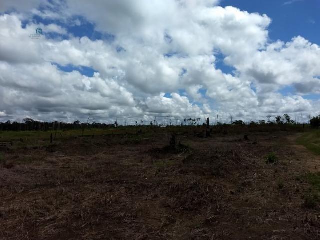Chácara para Venda em Arigolândia Porto Velho-RO - Foto 2