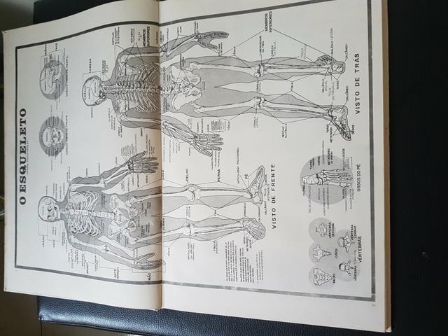 Grande Atlas de Anatomia Humana - Foto 4