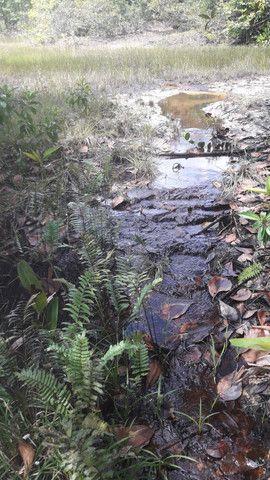 Terrenos para chácara antes de terra alta na PA 136 - Foto 2