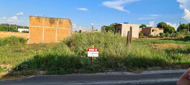 Lote/Terreno - Jardim Beatriz (Santa Ernestina) - 160m²