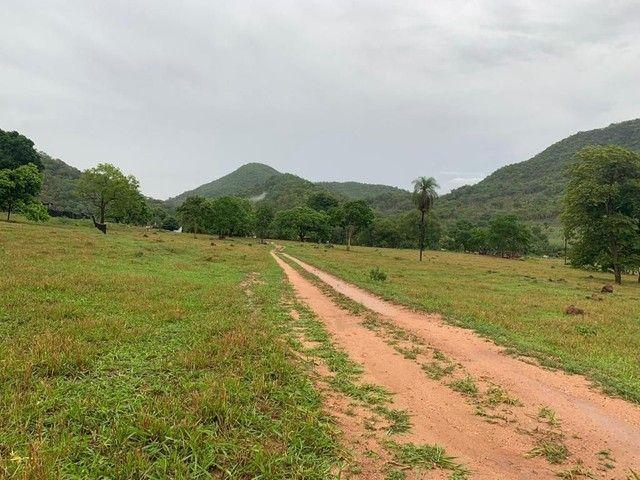 Fazenda Na Região da Agrovila  - Foto 6