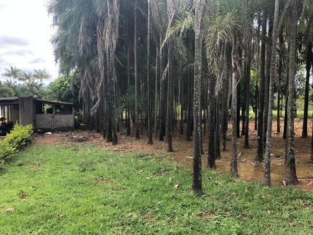 Fazenda em Bela Vista de Goiás de 15 Alqueires, à 45 km de Goiânia Dentro da Cidade - Foto 16