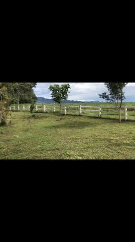 Fazenda em Rosário Oeste 1.460 hectares á venda - Foto 8