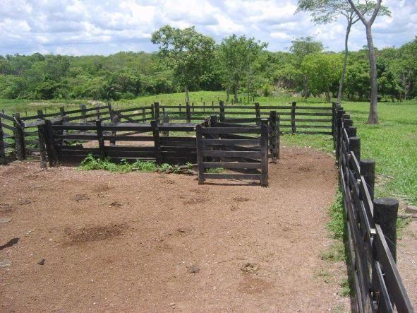 Chácara à venda em Zona rural, Nossa senhora do livramento cod:21342 - Foto 9