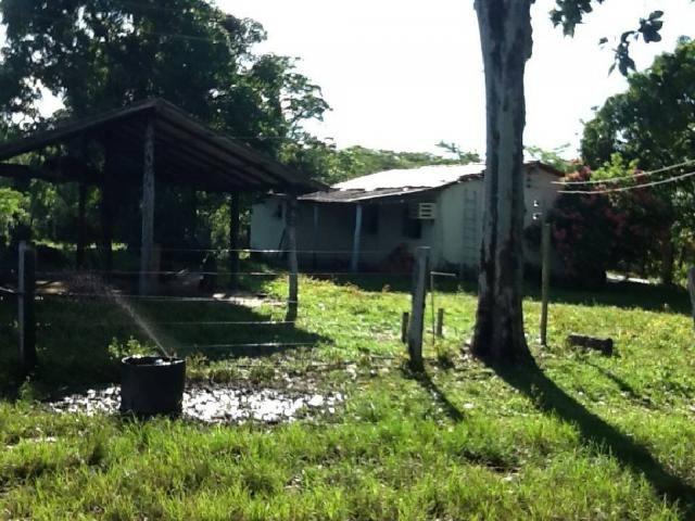Chácara à venda em Zona rural, Nossa senhora do livramento cod:21342 - Foto 5
