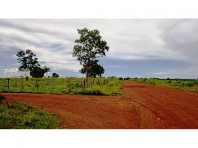Chácara à venda em Zona rural, Nossa senhora do livramento cod:13185 - Foto 4
