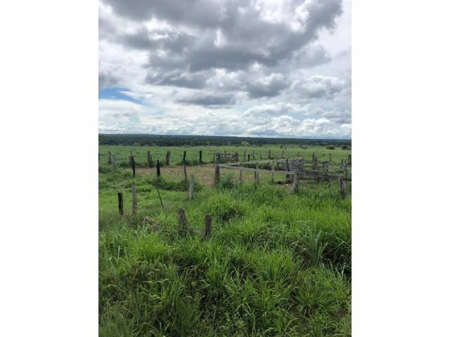 Chácara à venda em Rural, Nova mutum cod:22068 - Foto 17