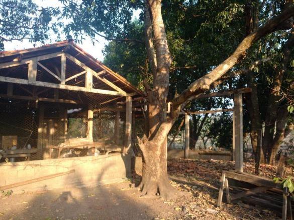 Chácara à venda em Zona rural, Cuiaba cod:20802 - Foto 4