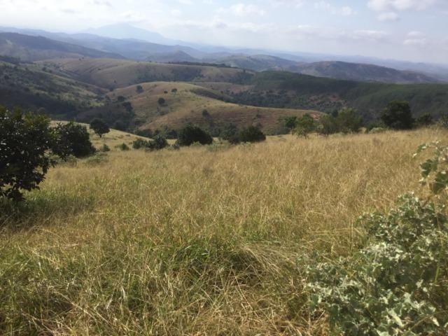 Fazenda 455.96 hectares - Governador Valadares/MG - Foto 13