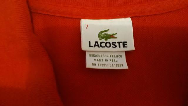 a042df0c93d Camisa lacoste original - Roupas e calçados - Jardim Angélica ...
