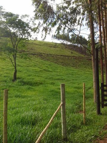 Fazenda 159,72 hectares - Leopoldina/MG; - Foto 18