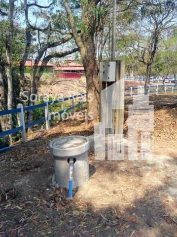 Chácara à venda com 4 dormitórios em Área rural de pará de minas, Pará de minas cod:820 - Foto 7