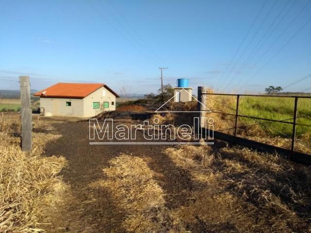 Sítio para alugar em Cravinhos, Cravinhos cod:L29437 - Foto 13