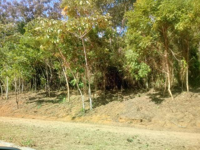 Residencial Naturaville - Lote L8 - Foto 18