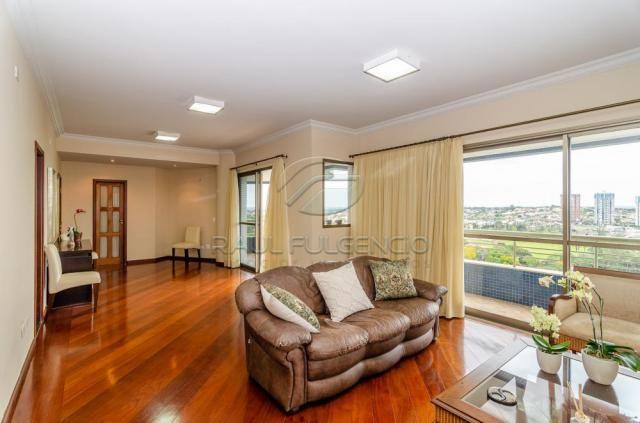 Apartamento para alugar com 4 dormitórios em Caicaras, Londrina cod:L4346 - Foto 3