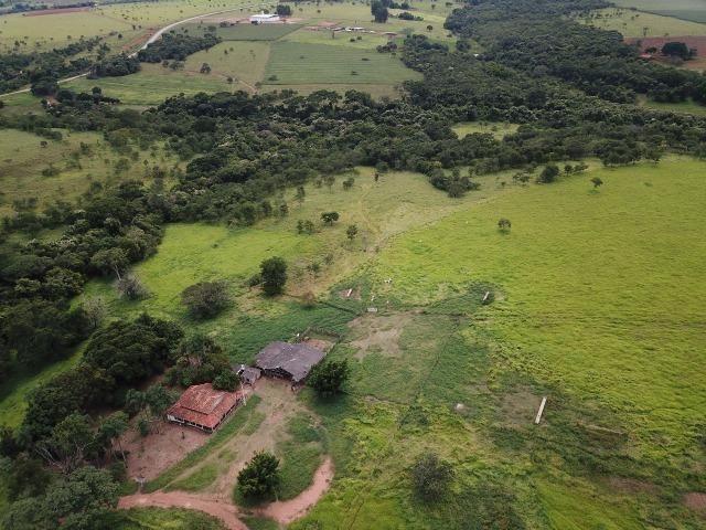 Fazenda em Bela Vista de Goiás de 15 Alqueires, à 45 km de Goiânia Dentro da Cidade - Foto 8