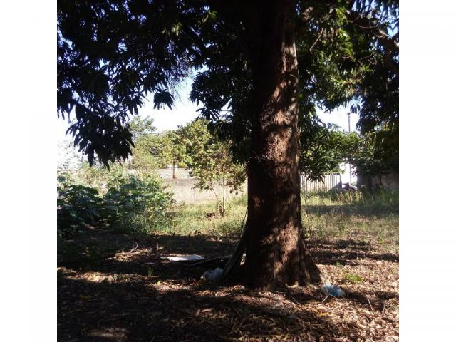 Loteamento/condomínio à venda em Lixeira, Cuiaba cod:21575 - Foto 5