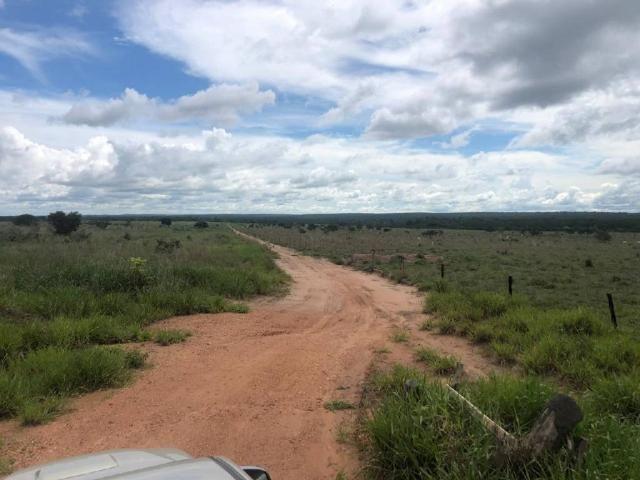 Chácara à venda em Rural, Nova mutum cod:22068 - Foto 3