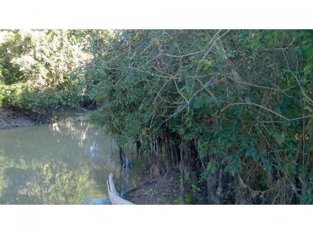 Chácara à venda em Zona rural, Santo antonio do leverger cod:21685 - Foto 4