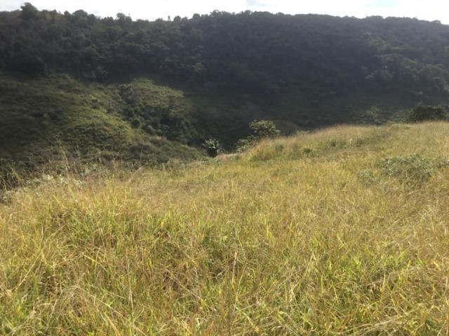 Fazenda 455.96 hectares - Governador Valadares/MG - Foto 12