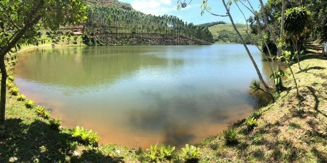 Fazenda 159,72 hectares - Leopoldina/MG; - Foto 8