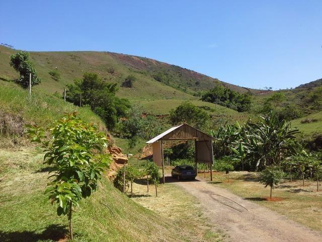 Fazenda 159,72 hectares - Leopoldina/MG; - Foto 15