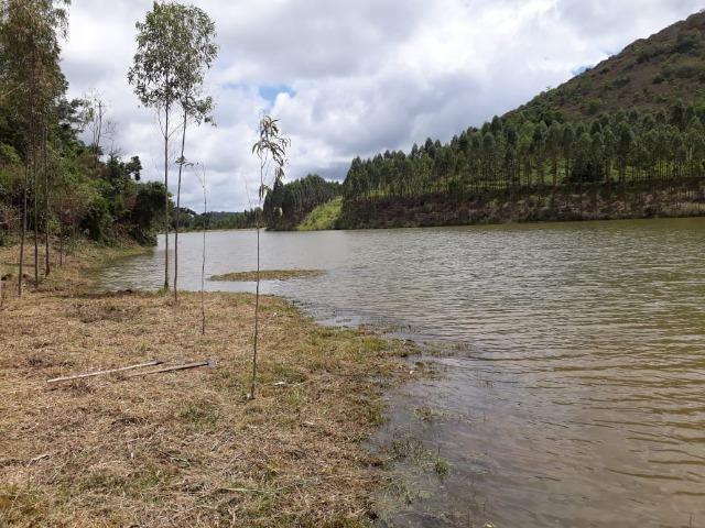 Fazenda 159,72 hectares - Leopoldina/MG; - Foto 4
