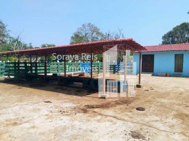 Chácara à venda com 4 dormitórios em Área rural de pará de minas, Pará de minas cod:820 - Foto 14