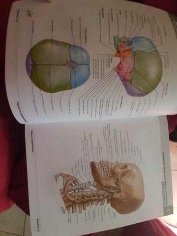 Atlas de anatomia humana Netter 6° ed. - Foto 2