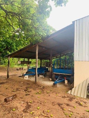 Fazenda Na Região da Agrovila  - Foto 14